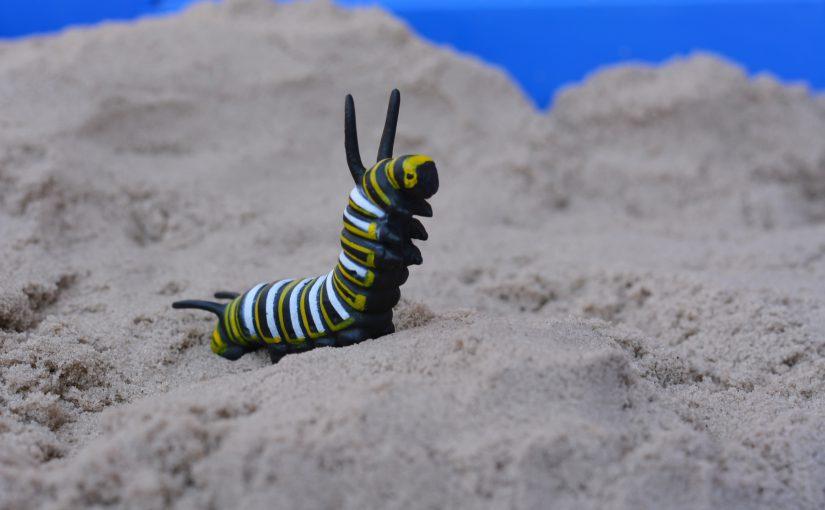 Sandplay, Pædagogisk Sandplay og WholeWorldPlay®